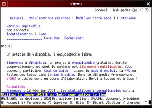 Copie ecran lynx1 300x214 - Accessibilité et e-commerce : Reprenons tout à zéro
