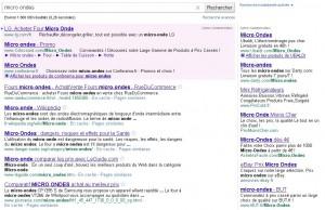 tmp resultats google 300x194 - Donner de la visibilité à vos produits sur Internet