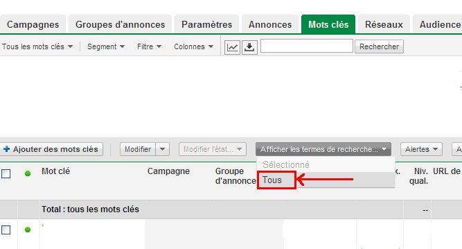 astuce adwords - Astuce Google Adwords N°1