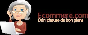 ecommerelogo 300x119 - Interview de Guillaume Rocheteau, cofondateur de Ecommere.com