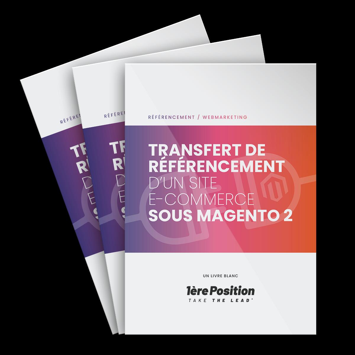 2 1 - SEO : réussir sa migration de site e-commerce vers Magento 2 !